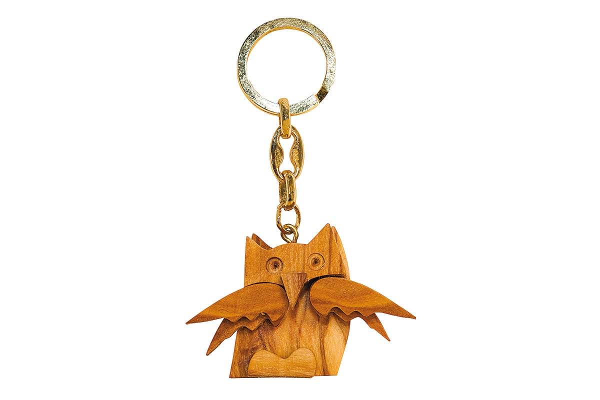 Key-rings with owl