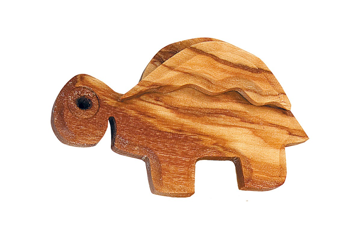 Magnet with turtle